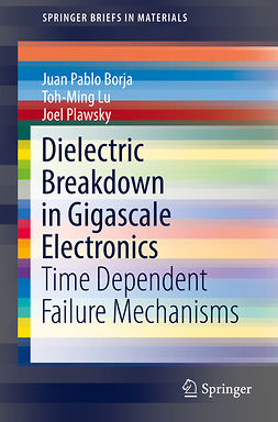 Borja, Juan Pablo - Dielectric Breakdown in Gigascale Electronics, ebook