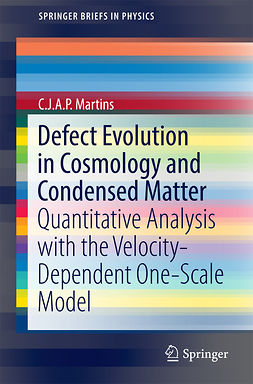 Martins, C.J.A.P. - Defect Evolution in Cosmology and Condensed Matter, e-bok