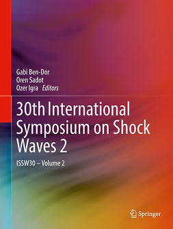 Ben-Dor, Gabi - 30th International Symposium on Shock Waves 2, e-kirja
