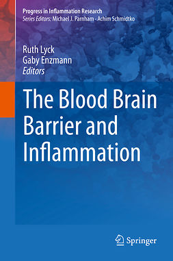 Enzmann, Gaby - The Blood Brain Barrier and Inflammation, e-kirja
