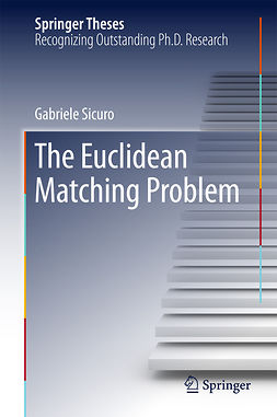 Sicuro, Gabriele - The Euclidean Matching Problem, e-bok
