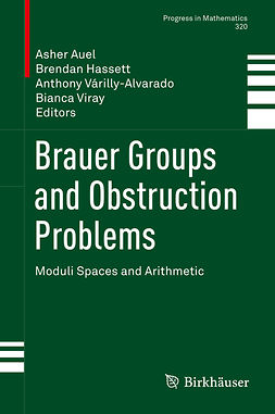Auel, Asher - Brauer Groups and Obstruction Problems, ebook
