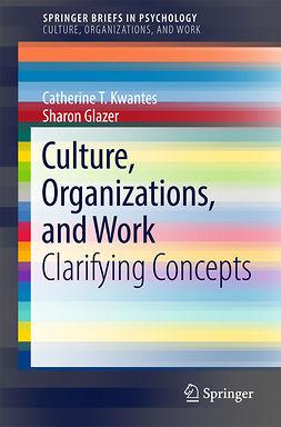 Glazer, Sharon - Culture, Organizations, and Work, ebook