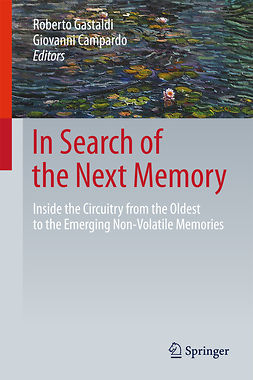 Campardo, Giovanni - In Search of the Next Memory, ebook