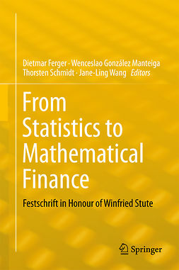 Ferger, Dietmar - From Statistics to Mathematical Finance, ebook