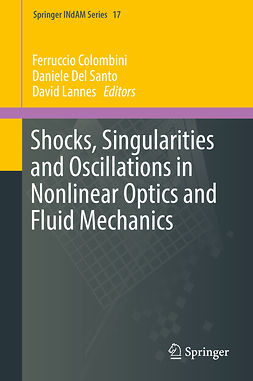 Colombini, Ferruccio - Shocks, Singularities and Oscillations in Nonlinear Optics and Fluid Mechanics, ebook