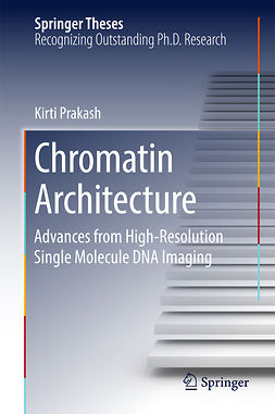 Prakash, Kirti - Chromatin Architecture, ebook