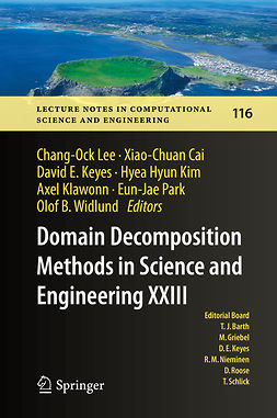 Cai, Xiao-Chuan - Domain Decomposition Methods in Science and Engineering XXIII, e-bok