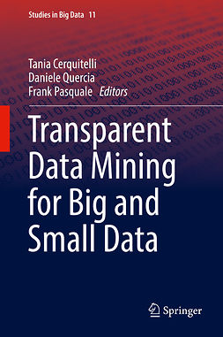 Cerquitelli, Tania - Transparent Data Mining for Big and Small Data, ebook