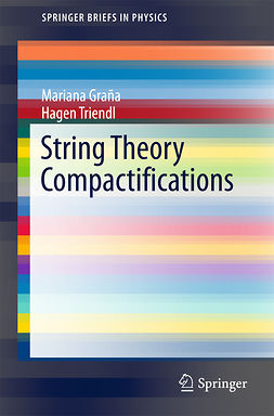 Graña, Mariana - String Theory Compactifications, ebook