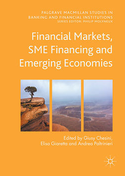 Chesini, Giusy - Financial Markets, SME Financing and Emerging Economies, e-kirja