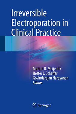 Meijerink, Martijn R. - Irreversible Electroporation in Clinical Practice, ebook