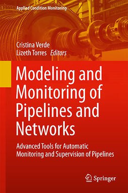 Torres, Lizeth - Modeling and Monitoring of Pipelines and Networks, ebook