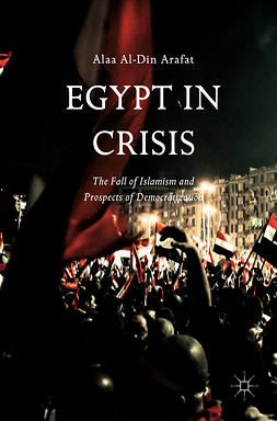 Arafat, Alaa Al-Din - Egypt in Crisis, ebook