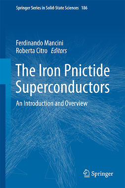 Citro, Roberta - The Iron Pnictide Superconductors, e-bok