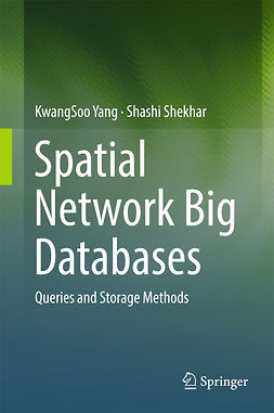 Shekhar, Shashi - Spatial Network Big Databases, ebook