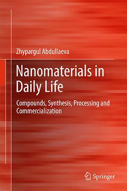Abdullaeva, Zhypargul - Nanomaterials in Daily Life, ebook