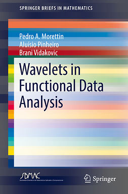 Morettin, Pedro A. - Wavelets in Functional Data Analysis, ebook