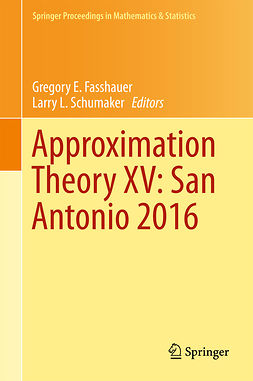 Fasshauer, Gregory E. - Approximation Theory XV: San Antonio 2016, ebook