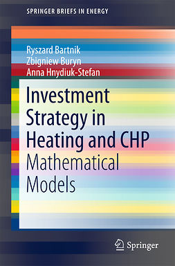 Bartnik, Ryszard - Investment Strategy in Heating and CHP, ebook