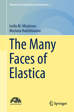 Hadzhilazova, Mariana - The Many Faces of Elastica, ebook