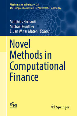 Ehrhardt, Matthias - Novel Methods in Computational Finance, ebook