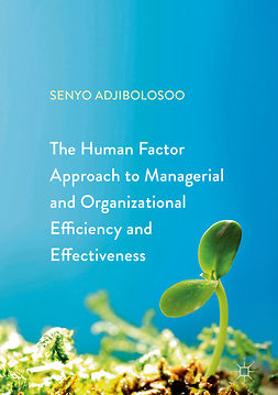 Adjibolosoo, Senyo - The Human Factor Approach to Managerial and Organizational Efficiency and Effectiveness, e-kirja