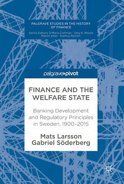 Larsson, Mats - Finance and the Welfare State, ebook