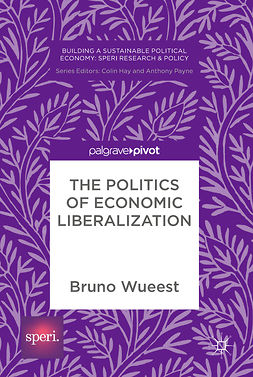 Wueest, Bruno - The Politics of Economic Liberalization, e-kirja