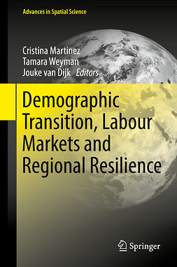 Dijk, Jouke van - Demographic Transition, Labour Markets and Regional Resilience, ebook