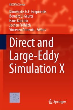 Armenio, Vincenzo - Direct and Large-Eddy Simulation X, ebook