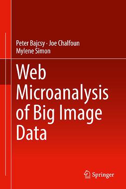 Bajcsy, Peter - Web Microanalysis of Big Image Data, ebook