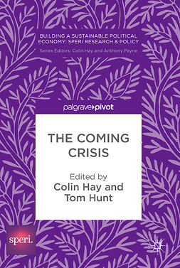Hay, Colin - The Coming Crisis, e-kirja