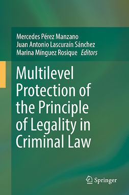 Manzano, Mercedes Pérez - Multilevel Protection of the Principle of Legality in Criminal Law, e-kirja