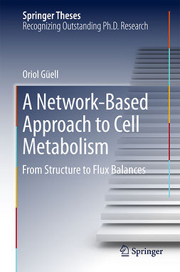 Güell, Oriol - A Network-Based Approach to Cell Metabolism, ebook