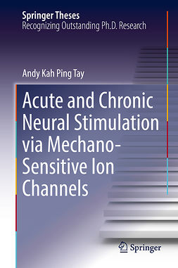 Tay, Andy Kah Ping - Acute and Chronic Neural Stimulation via Mechano-Sensitive Ion Channels, ebook