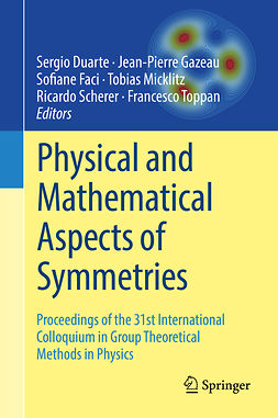 Duarte, Sergio - Physical and Mathematical Aspects of Symmetries, ebook