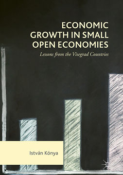 Kónya, István - Economic Growth in Small Open Economies, ebook