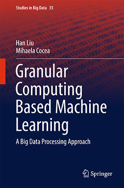 Cocea, Mihaela - Granular Computing Based Machine Learning, e-kirja