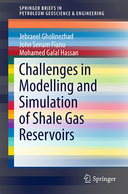 Fianu, John Senam - Challenges in Modelling and Simulation of Shale Gas Reservoirs, ebook