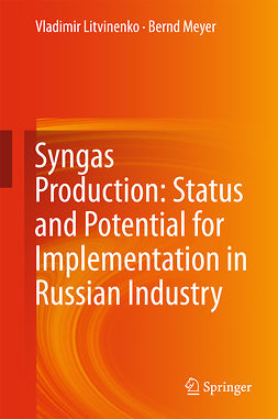 Litvinenko, Vladimir - Syngas Production: Status and Potential for Implementation in Russian Industry, e-kirja