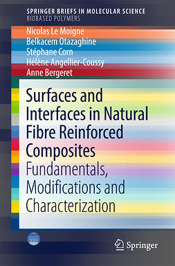 Angellier-Coussy, Hélène - Surfaces and Interfaces in Natural Fibre Reinforced Composites, ebook