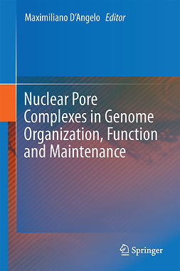 D'Angelo, Maximiliano - Nuclear Pore Complexes in Genome Organization, Function and Maintenance, e-bok