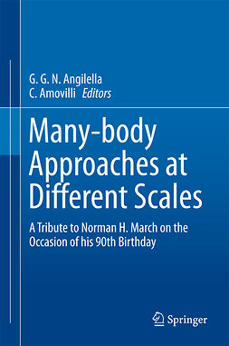 Amovilli, C. - Many-body Approaches at Different Scales, ebook