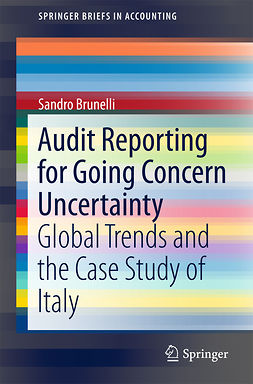 Brunelli, Sandro - Audit Reporting for Going Concern Uncertainty, e-kirja