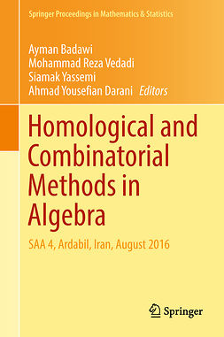 Badawi, Ayman - Homological and Combinatorial Methods in Algebra, ebook