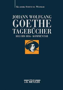 Albrecht, Wolfgang - Johann Wolfgang Goethe Tagebücher, e-kirja
