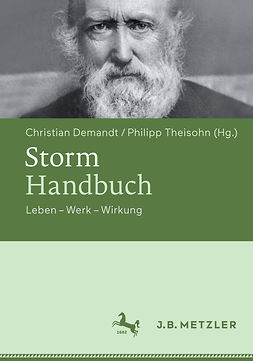 Demandt, Christian - Storm-Handbuch, ebook