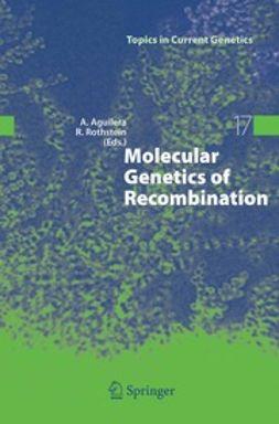 Aguilera, Andrés - Molecular Genetics of Recombination, e-bok