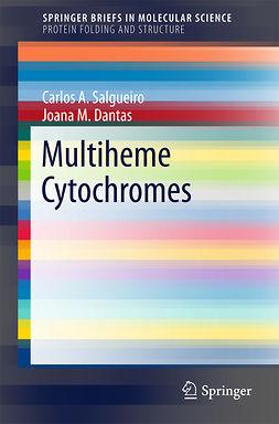 Dantas, Joana M. - Multiheme Cytochromes, e-bok